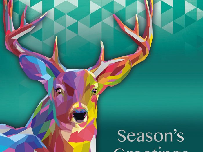 Bright Stag Xmas Card